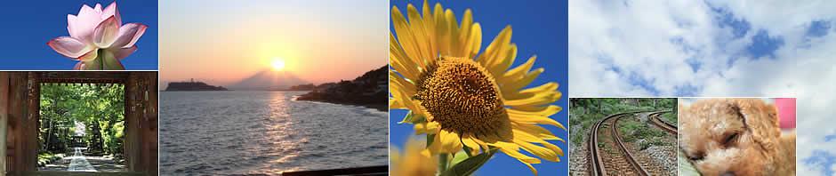 しんちゃん先生の撮影風景写真