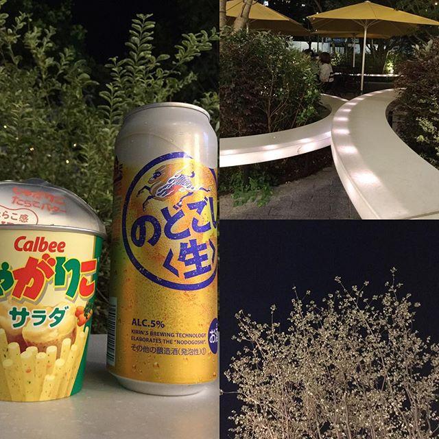 今日一日、お疲れ様でした。お近くのガーデン。東京都渋谷区にて。